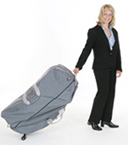 Pisces Productions Dolphin Travel Case Gray